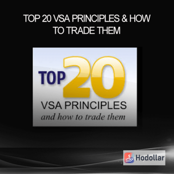 Top 20 VSA Principles & How to Trade Them