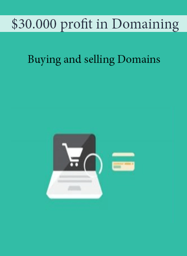 $30.000 profit in Domaining - Buying and selling Domains