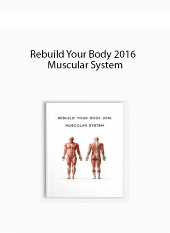 Rebuild Your Body 2016 - Muscular System